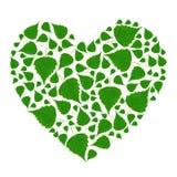 Coração verde Imagem de Stock Royalty Free