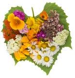 Coração verde com flores fotografia de stock