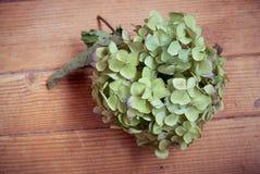 Coração verde da flor no fundo de madeira foto de stock royalty free