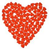 Coração vermelho. Imagem de Stock