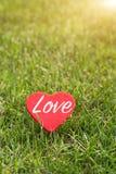 Coração vermelho com palavra do amor nos fundos da grama verde com espaço da cópia Fotos de Stock Royalty Free