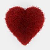 Coração vermelho da pele ilustração royalty free