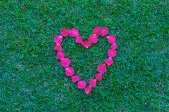 Coração vermelho das pétalas Imagem de Stock Royalty Free