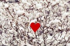 Coração vermelho de matéria têxtil no ramo de árvore nevado Imagens de Stock