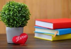 Coração vermelho do dia de Valentim na madeira velha Cartão dos feriados Fotos de Stock Royalty Free