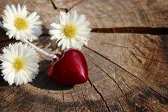 Coração vermelho em um tronco de árvore resistido foto de stock