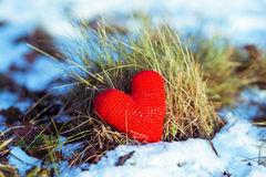 Coração vermelho na terra nevado Imagens de Stock