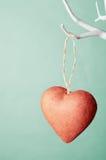 Coração vermelho que pendura da árvore contra o fundo de turquesa Imagem de Stock