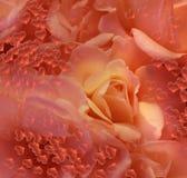 Corações cor-de-rosa bonitos com bolhas Imagens de Stock