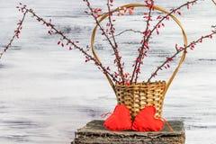 Corações da bérberis dois dos galhos da cesta Fotografia de Stock