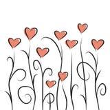 Corações da flor Imagem de Stock Royalty Free
