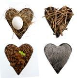 Corações da natureza Foto de Stock Royalty Free