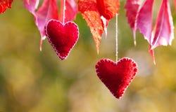 Corações de feltro do vermelho que penduram em cordas Fundo bonito do casamento valentines Fotos de Stock Royalty Free