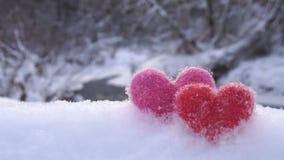 Corações de lã vermelhos e cor-de-rosa na neve branca na costa do rio no inverno filme