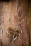 Corações de papel mergulhados dentro de se Fotografia de Stock Royalty Free