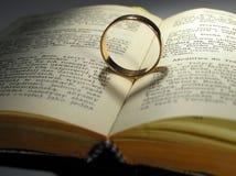 Corações do anel e do schadow Imagens de Stock Royalty Free