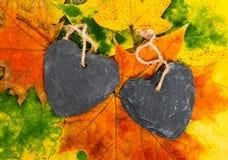 Corações do outono Imagem de Stock