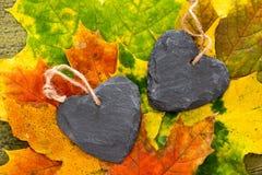 Corações do outono Fotos de Stock