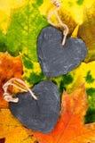Corações do outono Fotografia de Stock