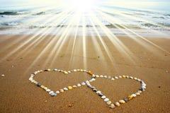 Corações do Seashell imagem de stock royalty free