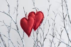 Corações do vintage em ramos Fotos de Stock