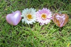 2 corações e 2 flores Fotografia de Stock