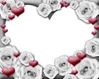 Corações e frame da foto das rosas Imagens de Stock
