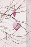 Corações feitos a mão que penduram no ramo fotos de stock
