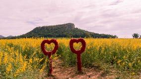 Corações nas flores Fotografia de Stock Royalty Free
