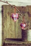 Corações que penduram a caixa da lata do galho Imagem de Stock Royalty Free