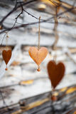Corações rústicos Fotografia de Stock Royalty Free