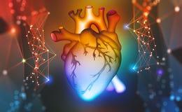 Cora??o humano Tecnologias de Digitas na medicina e na pesquisa científica do corpo ilustração do vetor
