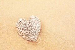 Corail en forme de coeur Photo stock