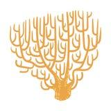 Corail jaune de fan, icône tropicale de Marine Invertebrate Animal Isolated Vector de récif Photo libre de droits