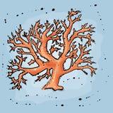 coral illustrazione di stock
