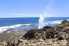 Coral Bay, Australia occidental Foto de archivo libre de regalías