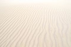 Coral Bay, Australia occidentale Fotografie Stock