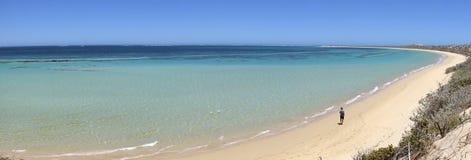 Coral Bay, Australia occidentale Immagini Stock Libere da Diritti