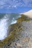 Coral Bay, Austrália Ocidental Imagens de Stock
