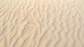 Coral Bay västra Australien Arkivbilder