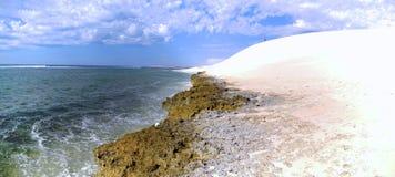 Coral Bay västra Australien Arkivbild