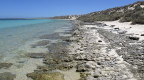 Coral Bay, West-Australien Stockfoto