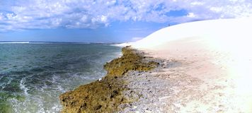 Coral Bay, Western Australia Stock Photography