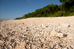 Coral beach. Beach of coral sand on Ishigaki Island, Japan Stock Image