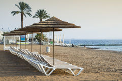 Coral beach of Eilat, Israel Royalty Free Stock Image