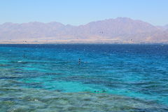 Coral Beach Nature Reserve in Eilat, Israel. Royalty Free Stock Photos