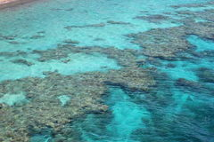 Coral Beach Nature Reserve en Eilat, Israel Fotos de archivo