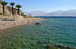 Coral beach near of Eilat, Israel Stock Images