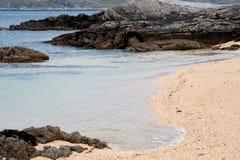 Coral Beach - Tra en Doilin Royaltyfria Foton