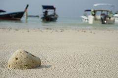Coral beached on the sand. Have a boat image as a background. Royalty Free Stock Image